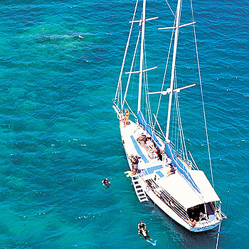 Great Barrier Reef Upolu Cay Tour